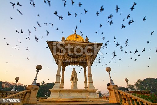 This scene can be witnessed every morning at the gate side of Mysore palace, Thousands of pigeons flock here everyday. It is even more beautiful to see the bird lovers gathering here to feed the pigeons. The Amba Vilasa Palace – Mysore. Karnataka.