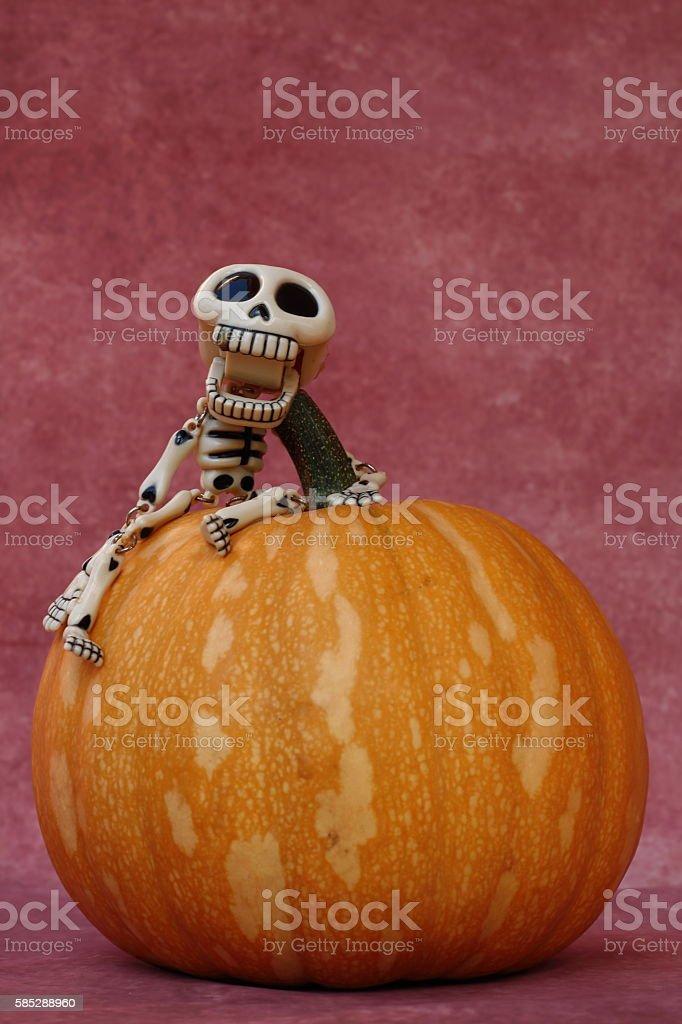 SYMPATHETIC SKELETON GRABBED A HALLOWEEN PUMPKIN stock photo