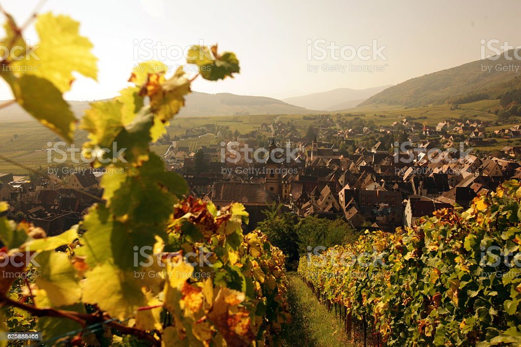 EUROPE FRANCE ALSACE - foto stock