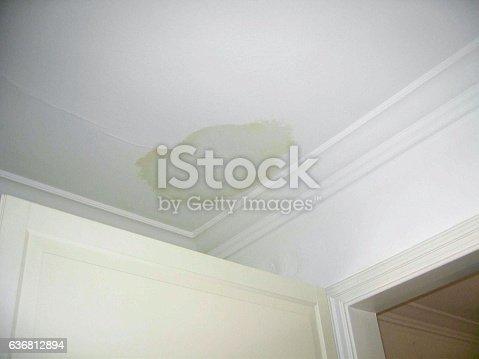 Ceiling leak.