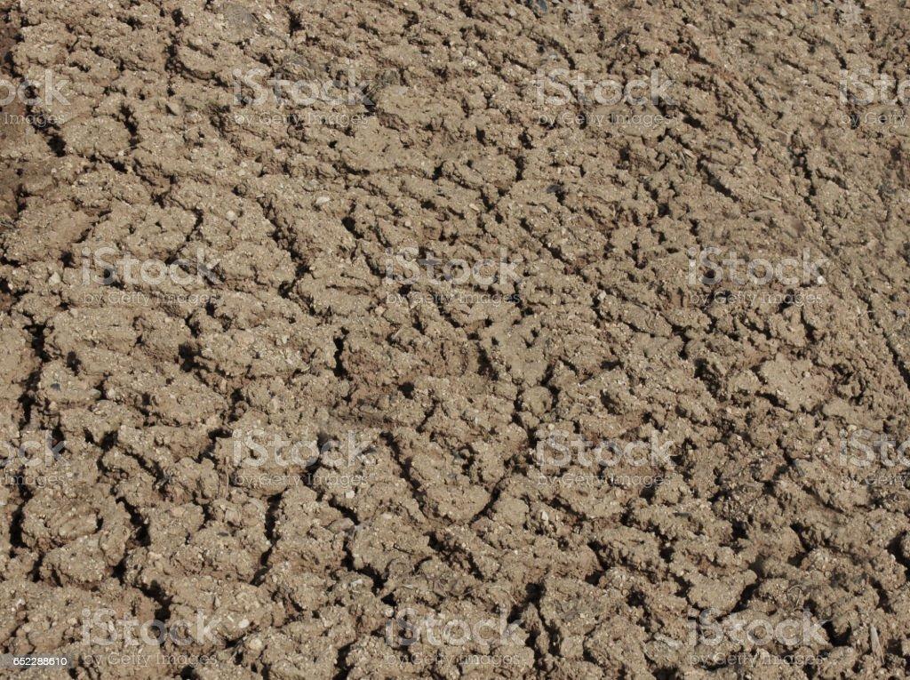 건조한 땅,메마른땅 stock photo