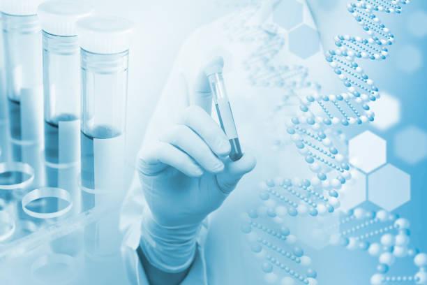 医療・研究イメージ 遺伝子にかかわるイメージ - investigación científica fotografías e imágenes de stock