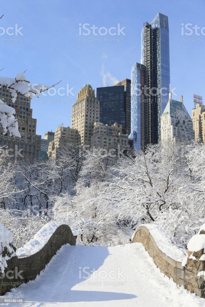セントラルパーク 雪景色 縦位置 stock photo
