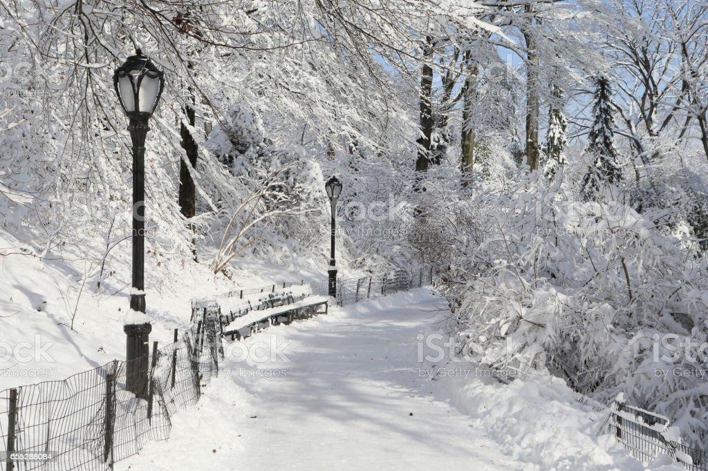 セントラルパークの雪の小道 stock photo
