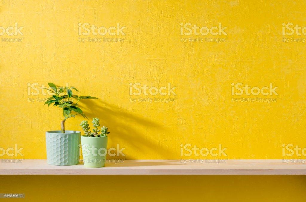 黄色い壁と棚のある部屋 stock photo