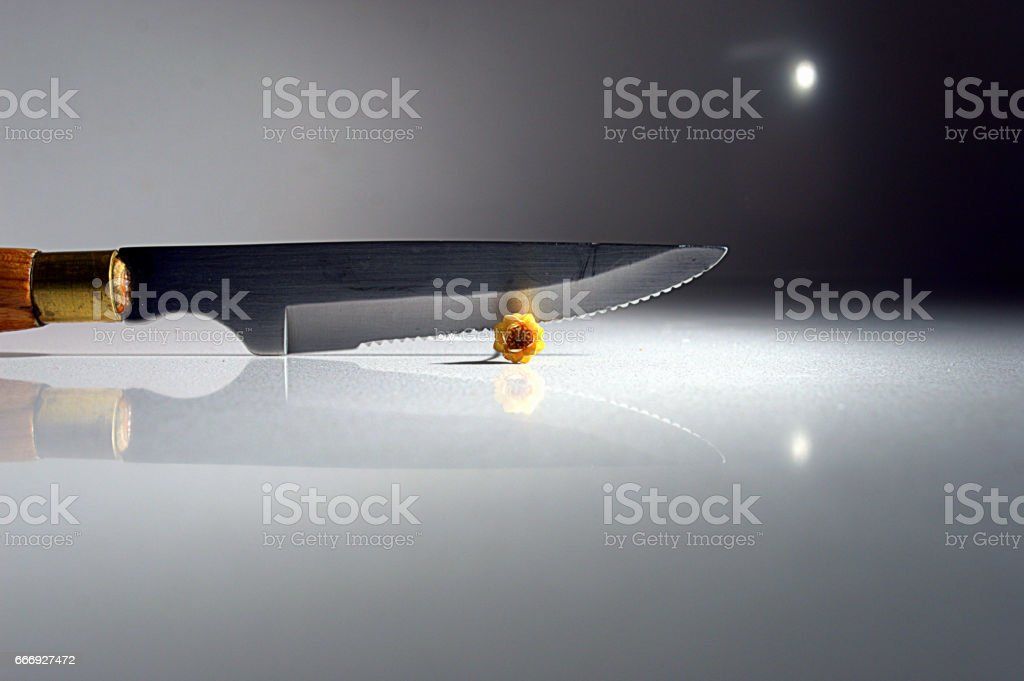 KILLING A FLOWER - foto de stock