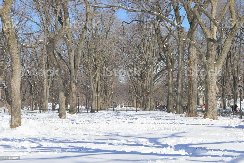 セントラルパーク 雪景色 stock photo