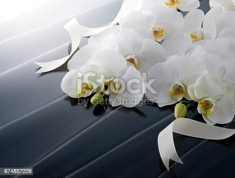 istock 胡蝶蘭のギフトイメージ 674857226