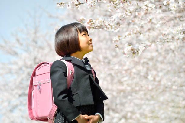 新一年生の女の子(桜) - 女性 横顔 日本人 ストックフォトと画像