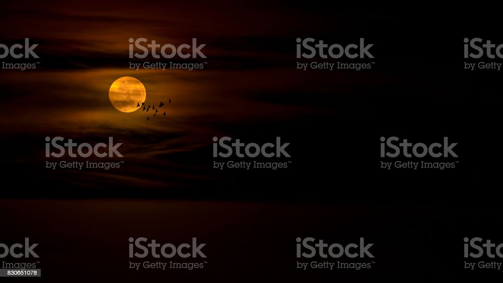 RED MOON stock photo