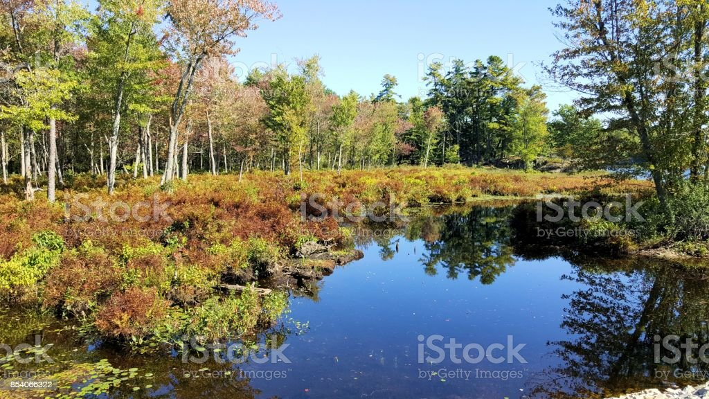 A BODY OF WATER FOUND IN THE WOODS OF FRONTENAC PARK, ONTARIO, CANADA stock photo