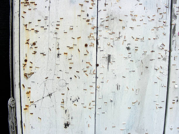 WHITE WALL WITH RUSTY STAPLES stock photo