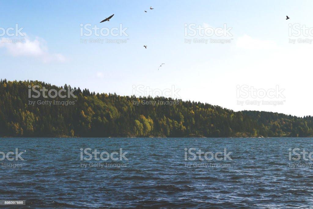 озеро stock photo
