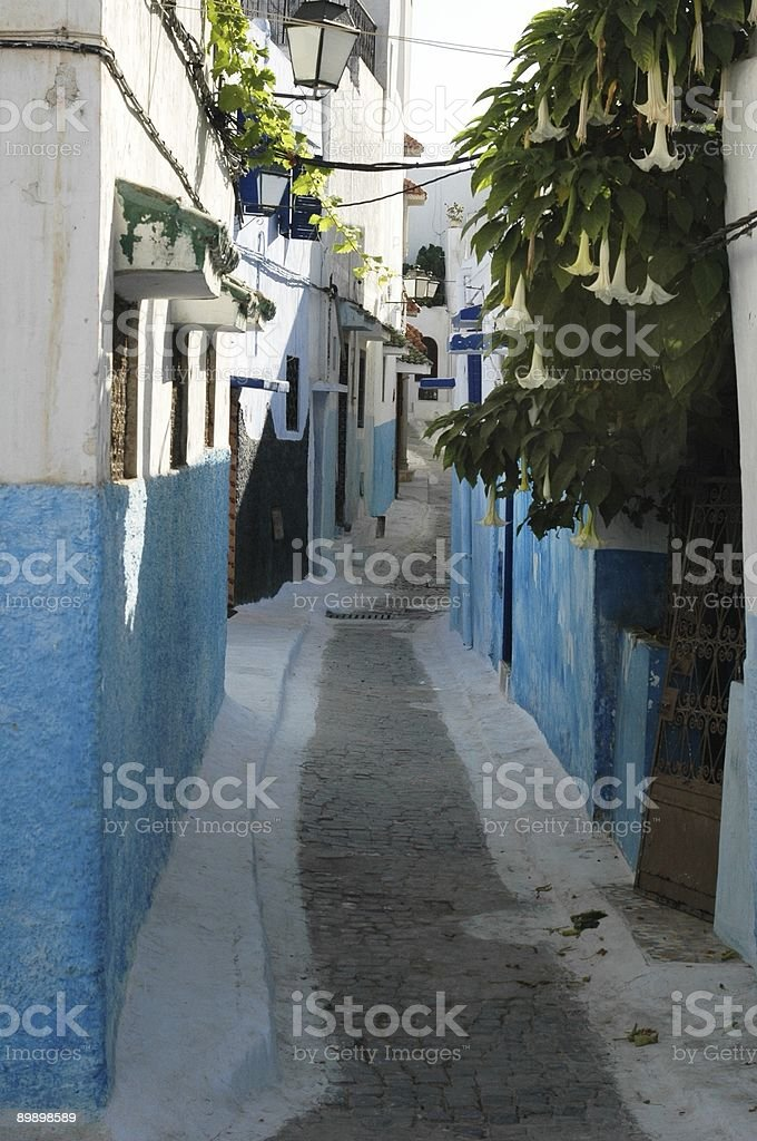 ROAD AND HOUSE royalty free stockfoto