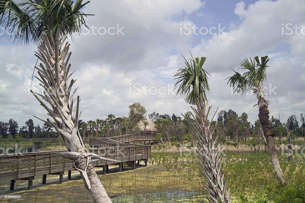 GREEN CAY NORTH TRAIL royalty-free stock photo
