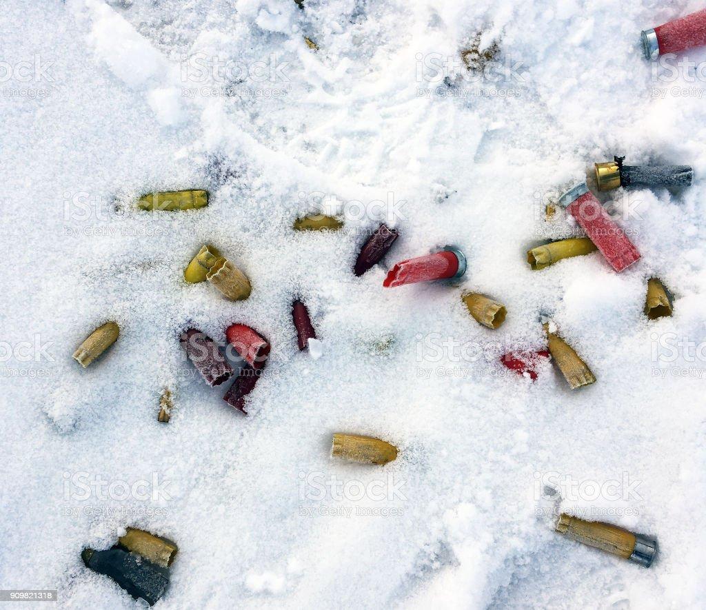 SHOTGUN SHELLS IN SNOW stock photo