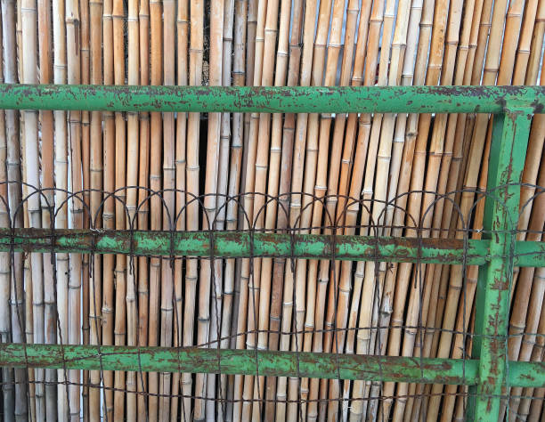 BAMBOO AND WIRE FENCE stock photo