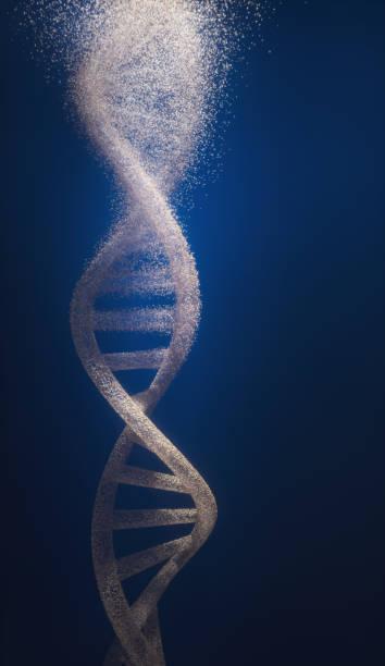 dna - mutazione genetica foto e immagini stock