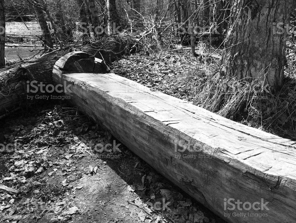HEWN LOG BENCH stock photo