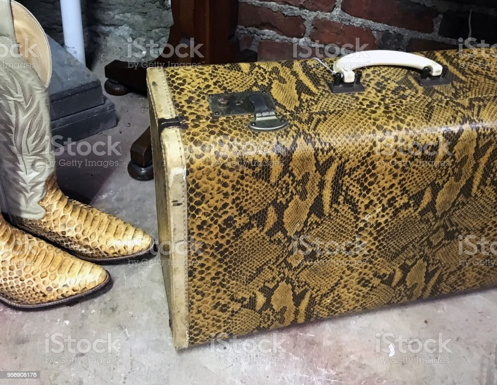 SNAKESKIN BOOTS AND SUITCASE stock photo