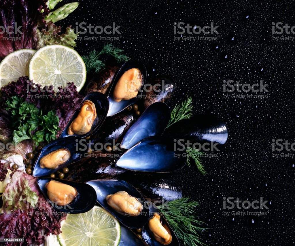 FRESH MUSSELS WITH LIME AND SALAD - Royalty-free Animal Shell Stock Photo