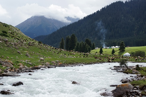 Жизнь В Горах Кыргызстана 0명에 대한 스톡 사진 및 기타 이미지