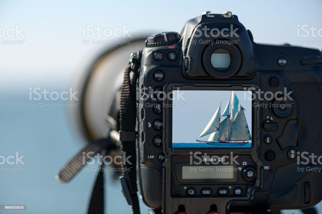 DIGITAL REFLEX - foto stock