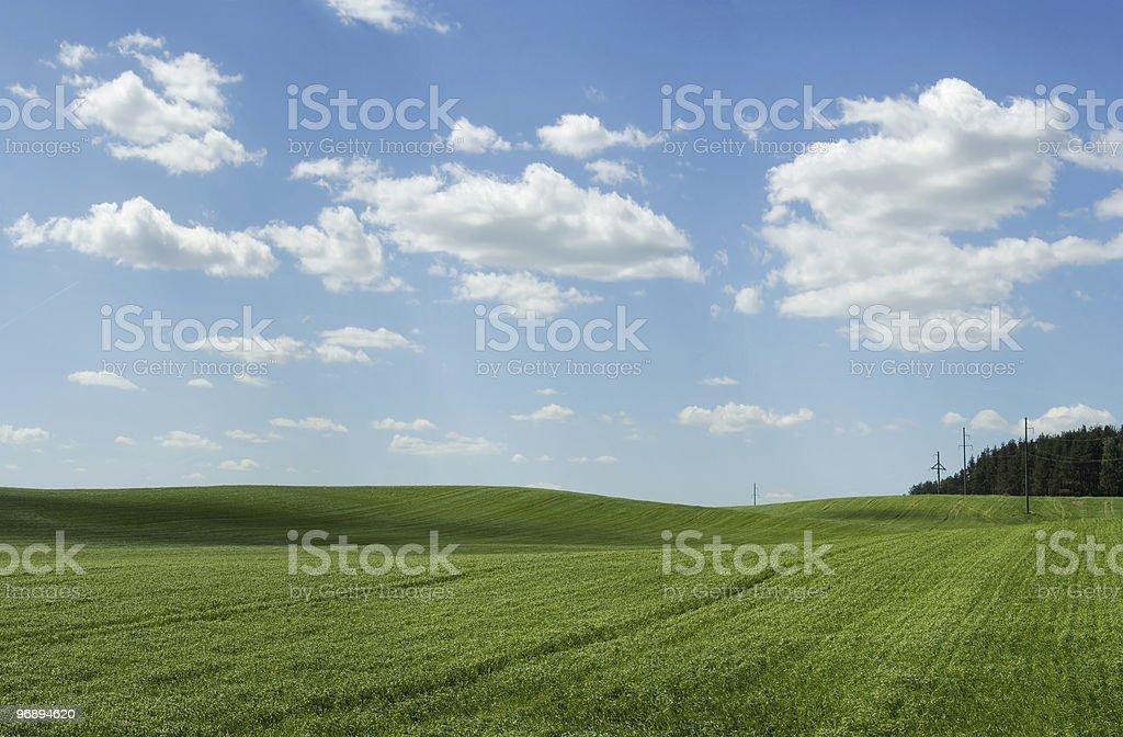 Зеленые холмы royalty-free stock photo