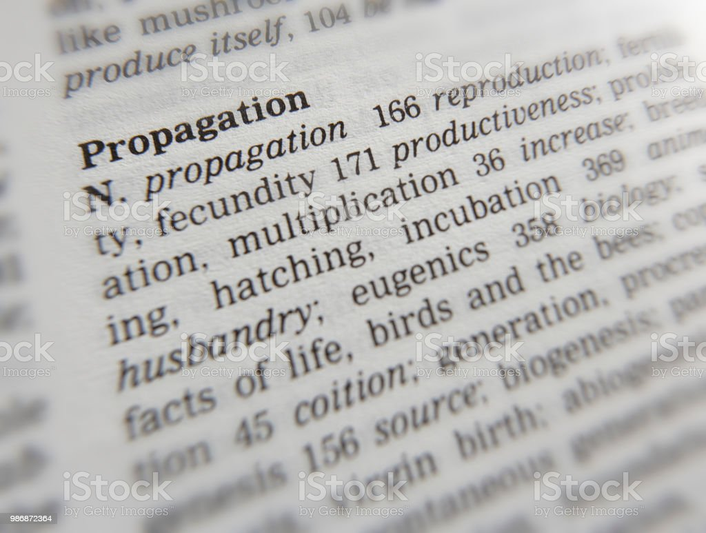 Thesaurus Page Showing Definition Of The Word Propagation