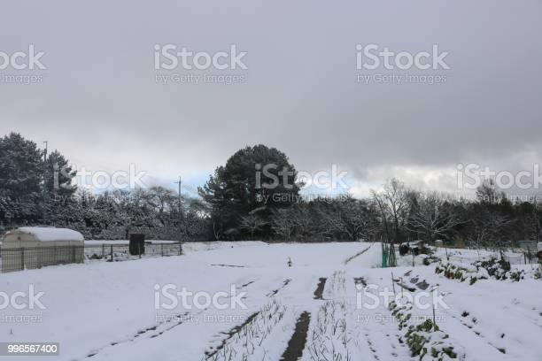 雪景色と少しの青空