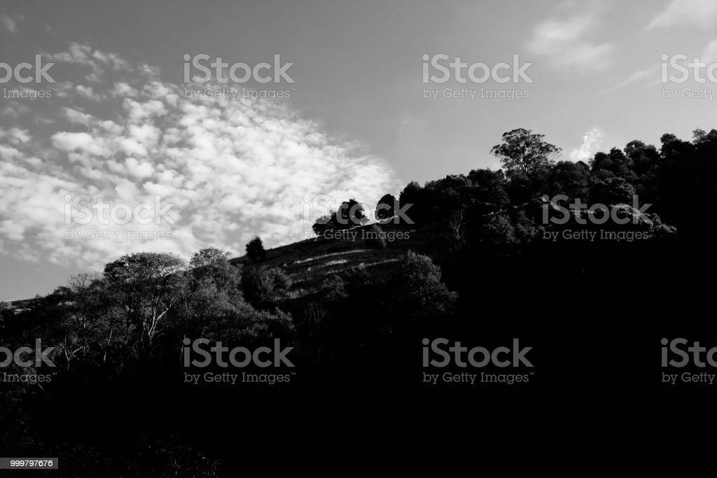 STILL MOVING LANDSCAPE stock photo
