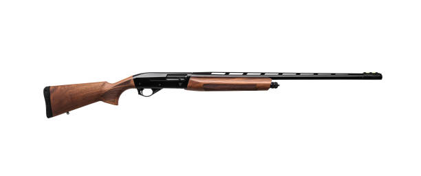 12-caliber shotgun for sports, recreation and hunting. Semi-automatic shotgun with a wooden butt and forearm isolated on white background 12-caliber shotgun for sports, recreation and hunting. Semi-automatic shotgun with a wooden butt and forearm isolated on white background bird hunting stock pictures, royalty-free photos & images