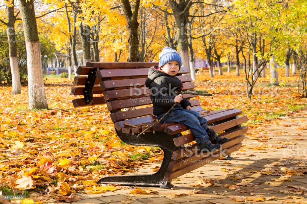 A 2-year old boy sitting on autumn fall park bench. royalty-free stock photo