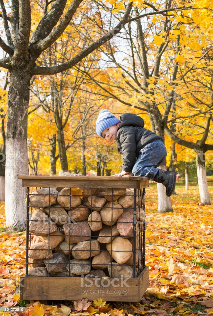 A 2-year old boy walking in the autumn fall park and  sitting on the stones. royalty-free stock photo