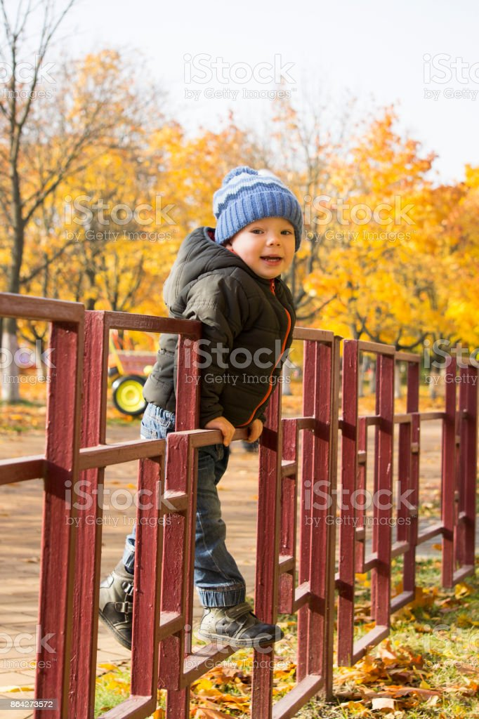 A 2-year old boy walking in the autumn park and hanging on the fence. royalty-free stock photo