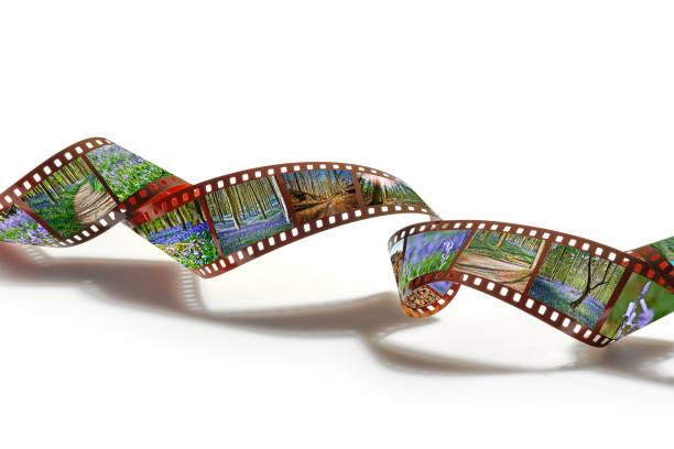 35mm Streifenfilm und Rahmen mit Bildern der Blauglocken von Hallerbos – Foto