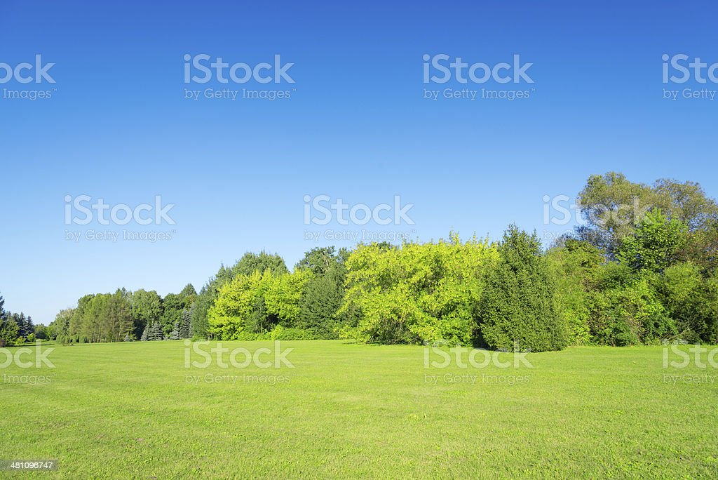 36Mpix Summer Landscape Horizontal stock photo
