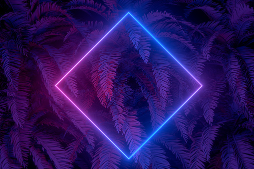 3d rendering of abstract background with ultraviolet neon lights, empty frame, glowing lines with palm tree. Purple, blue  and blue colors.