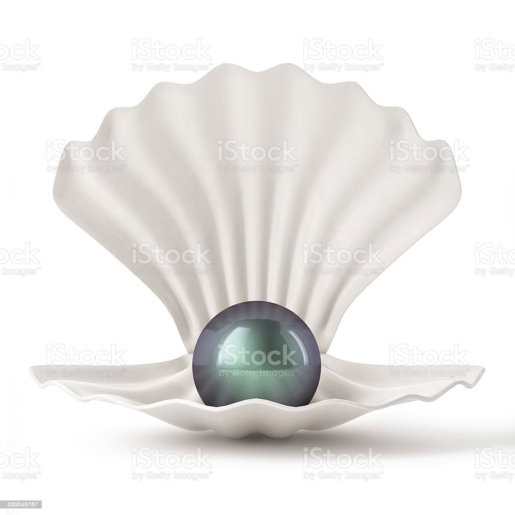 3d Black Shell with pearl isolated on white background stock photo