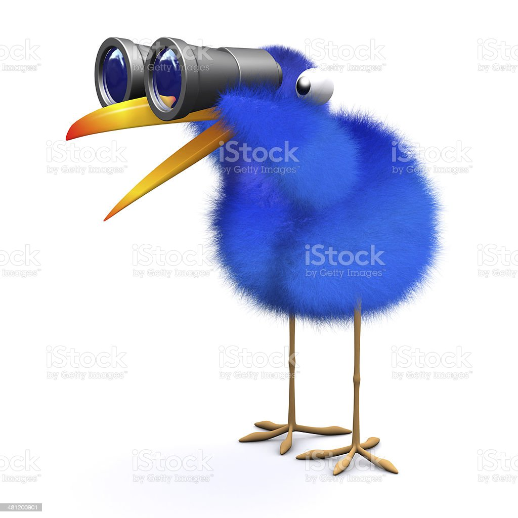 3d Blue bird binoculars royalty-free stock photo