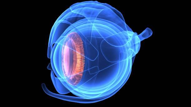 3d blaues auge auf schwarzem hintergrund. augapfel mit schüler blauton mit rote äderchen - illustration optician stock-fotos und bilder
