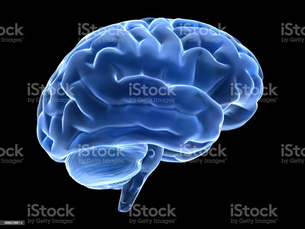 3d brain 3d glass brain isolated on black backgruond Anatomy Stock Photo