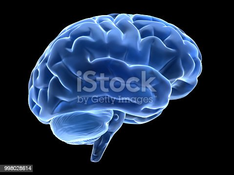 3d glass brain isolated on black backgruond