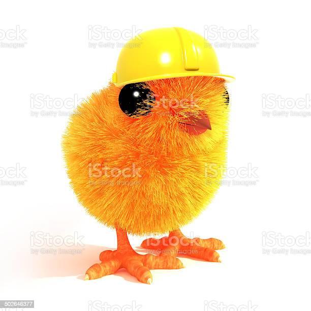3d chick wearing a builders hat picture id502646377?b=1&k=6&m=502646377&s=612x612&h=jxynxj273a4shvijwirzbrpdvr48rbpuw7afkjx4jok=