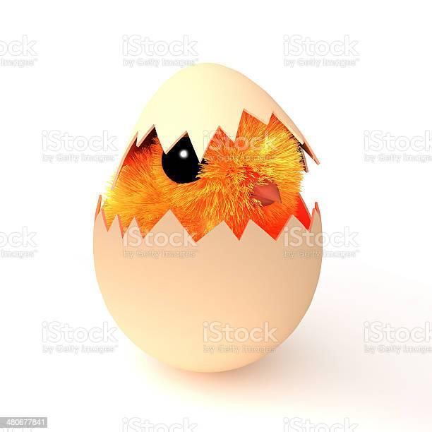 3d easter chick hatching picture id480677841?b=1&k=6&m=480677841&s=612x612&h=nwl  5bzu8jnnwarjgjldibxsm5n1kyfqtmnd6rfgau=