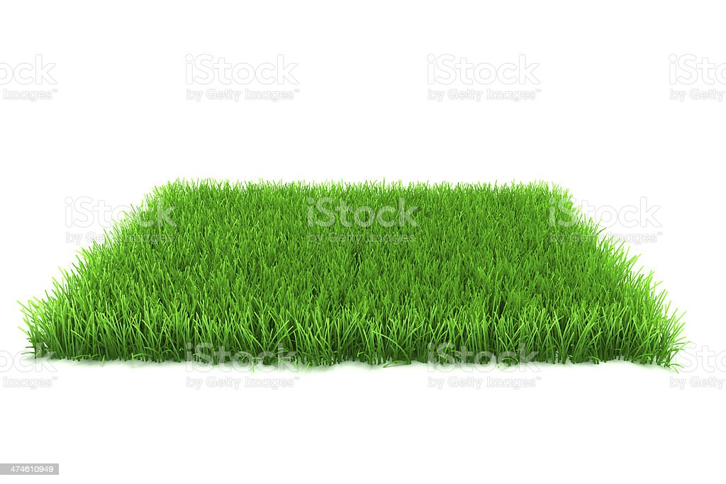 3d fresh green grass on white background stock photo