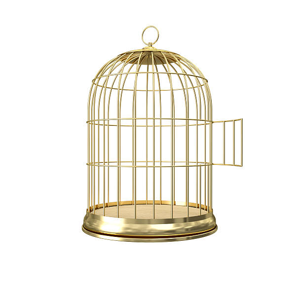 Royalty Free Empty Bird Cage Pictures, Images And Stock