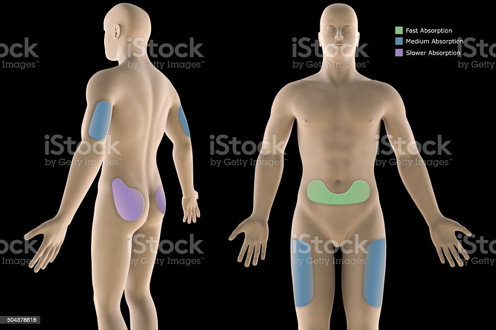 3d illustration human diabetic, insulin injection sites with clipping path. stock photo