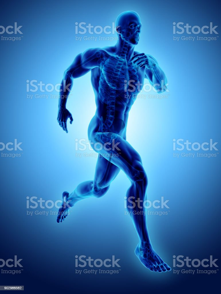 3d illustration male running pose with x-ray skeleton joint, medical concept. royalty-free stock photo