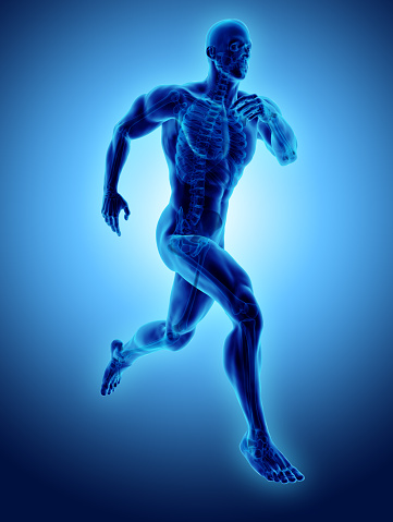 istock 3d illustration male running pose with x-ray skeleton joint, medical concept. 902966562
